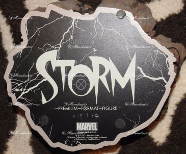 Sideshow-Exclusive-WHITE-STORM-Premium-Format-019-150-_57