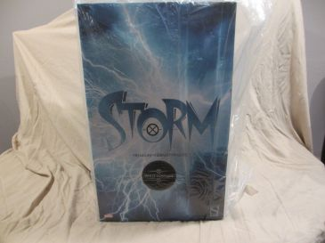 Sideshow-Exclusive-WHITE-STORM-Premium-Format-Statue-_57