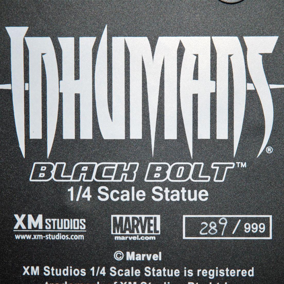 XM-Studios-BLACK-BOLT-1-4-Scale-Statue-289-999-_57 (5)