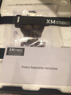 Xm-Studios-Incredible-Hulk-Bust-14-Scale-Statue-_57 (1)